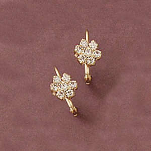 Cz Special Flower Earring at www.SunshineJewelry.com